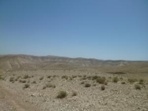 the desert itself