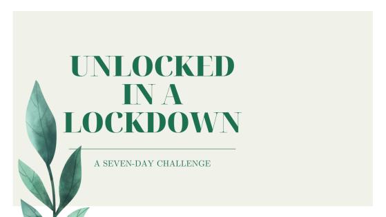 Unlocked in a Lockdown - Investigative Selfism